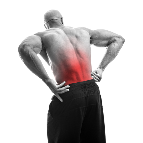 pt for  lower back pain
